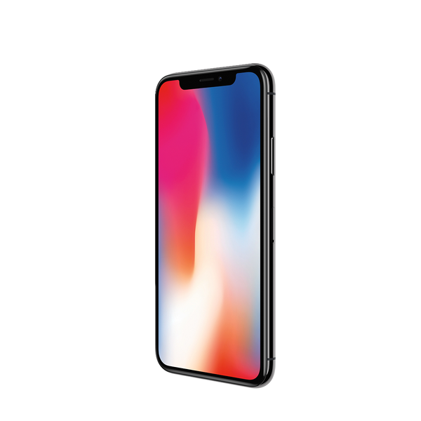 SWAP Apple iPhone X 256Gb Space Gray (MQAF2)